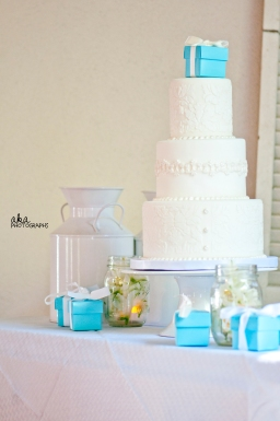 rustic wedding, tiffany blue decor, damask, tampa fl, karnes stables, sweet tweets cakery