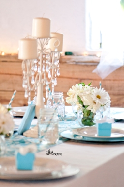 rustic wedding, tiffany blue decor, damask, tampa fl, karnes stables