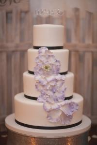 purple and green wedding, rustic wedding, tampa weddings, barn weddings, sweet tweets cakery, barrington hill weddings