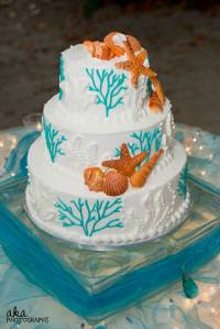 blue weddings, beach weddings, anna maria island wedding, sandbar weddings